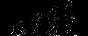 Darwin theory
